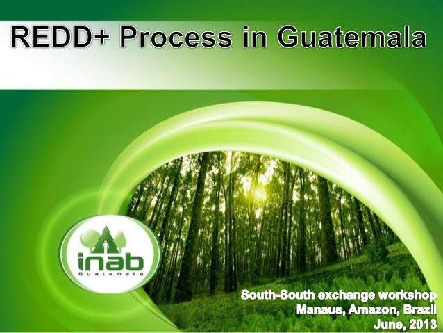 For REDD+ process Baseline in Tierras Bajas Norte Compensation Mechanisms and Incentives National Group of experts for for...