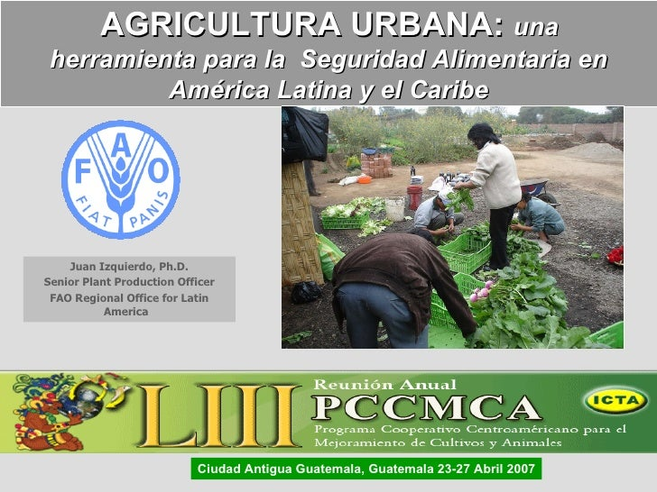 Juan Izquierdo, Ph.D. Senior Plant Production Officer FAO Regional Office for Latin America  AGRICULTURA URBANA:  una  her...