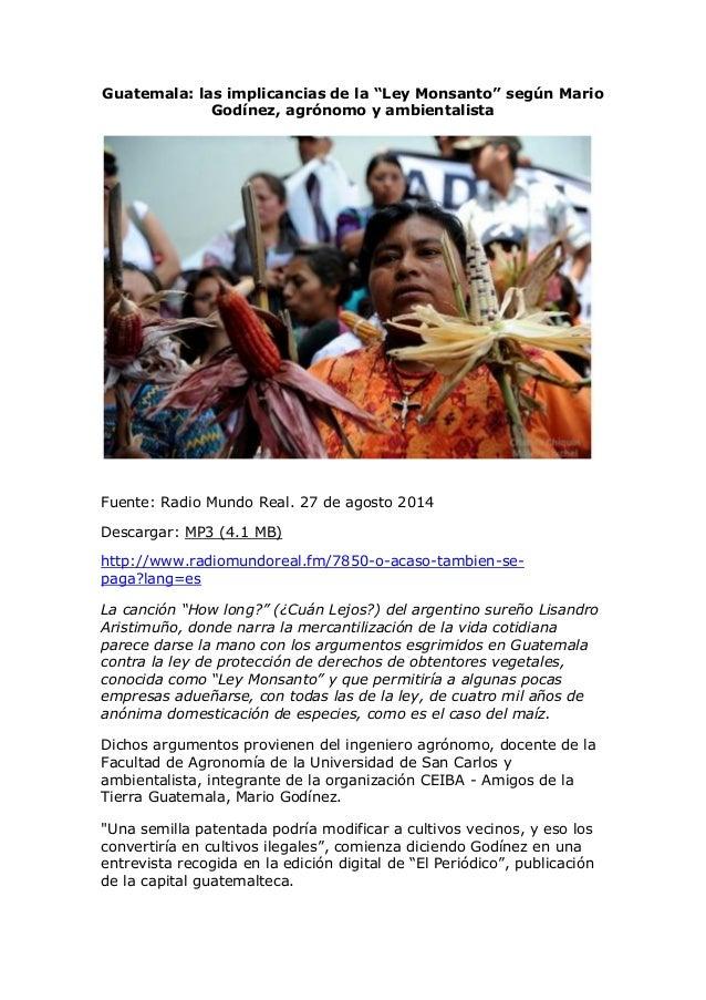 """Guatemala: las implicancias de la """"Ley Monsanto"""" según Mario Godínez, agrónomo y ambientalista  Fuente00:00 05:58  Fuente:..."""