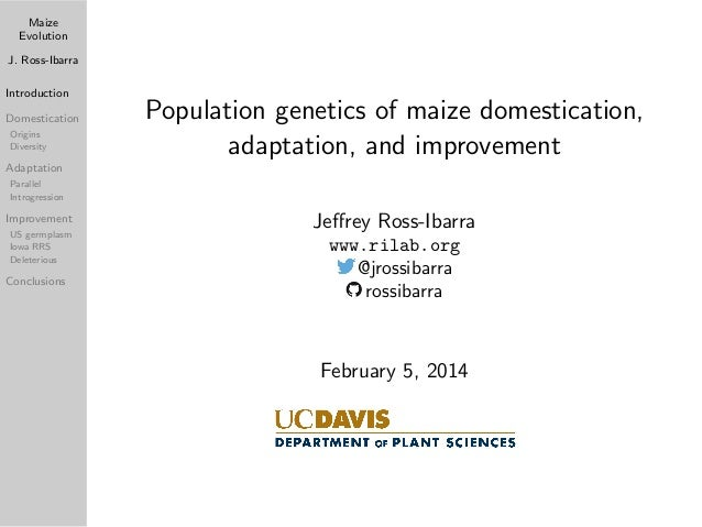 Maize Evolution J. Ross-Ibarra Introduction Domestication Origins Diversity  Population genetics of maize domestication, a...