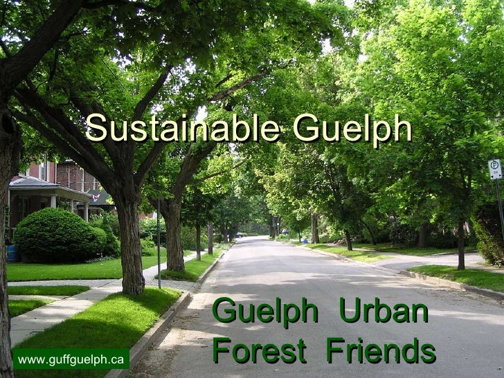 Guelph  Urban Forest  Friends Sustainable Guelph www.guffguelph.ca