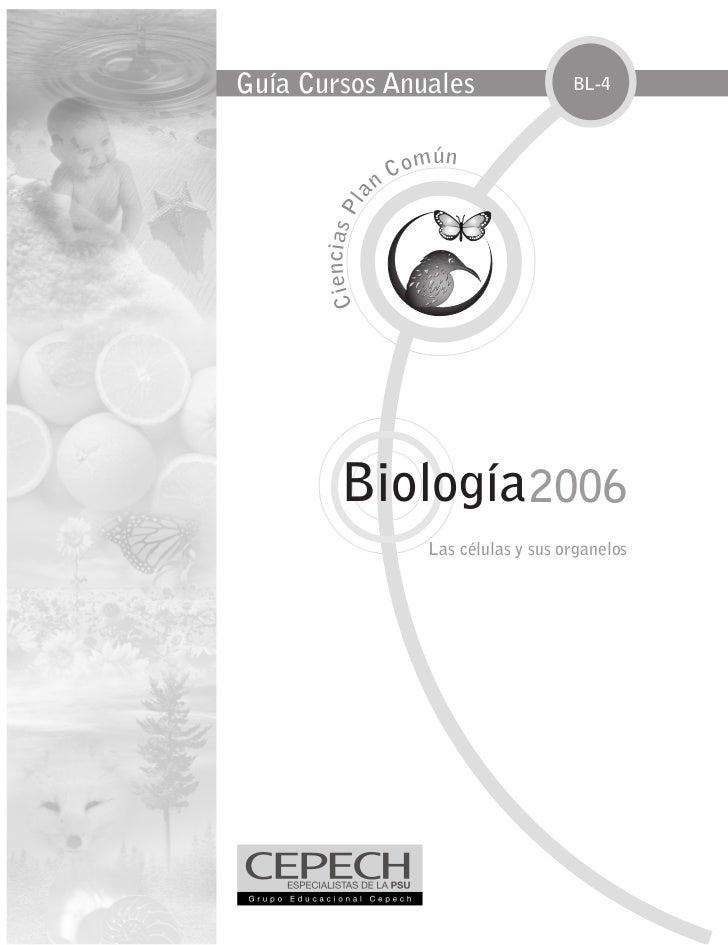 Guía Cursos Anuales                                     BL-4                                    m ún                      ...