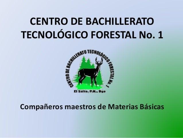 CENTRO DE BACHILLERATO TECNOLÓGICO FORESTAL No. 1 Compañeros maestros de Materias Básicas