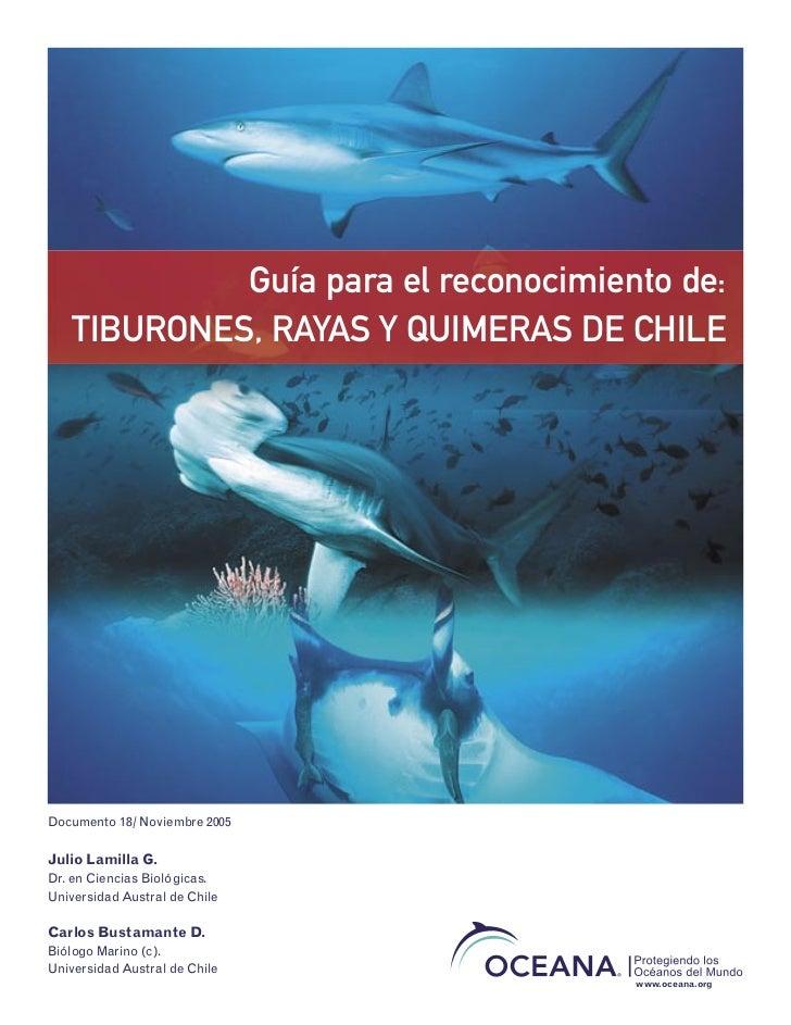 Guía para el reconocimiento de:   TIBURONES, RAYAS Y QUIMERAS DE CHILEDocumento 18/ Noviembre 2005Julio Lamilla G.Dr. en C...