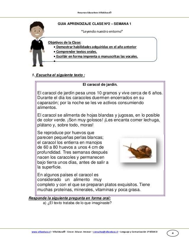 Guia de aprendizaje lenguaje 1 b semana 1 2014 1 for Caracoles en el jardin