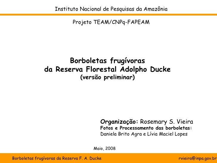 Instituto Nacional de Pesquisas da Amazônia                             Projeto TEAM/CNPq-FAPEAM                      Borb...