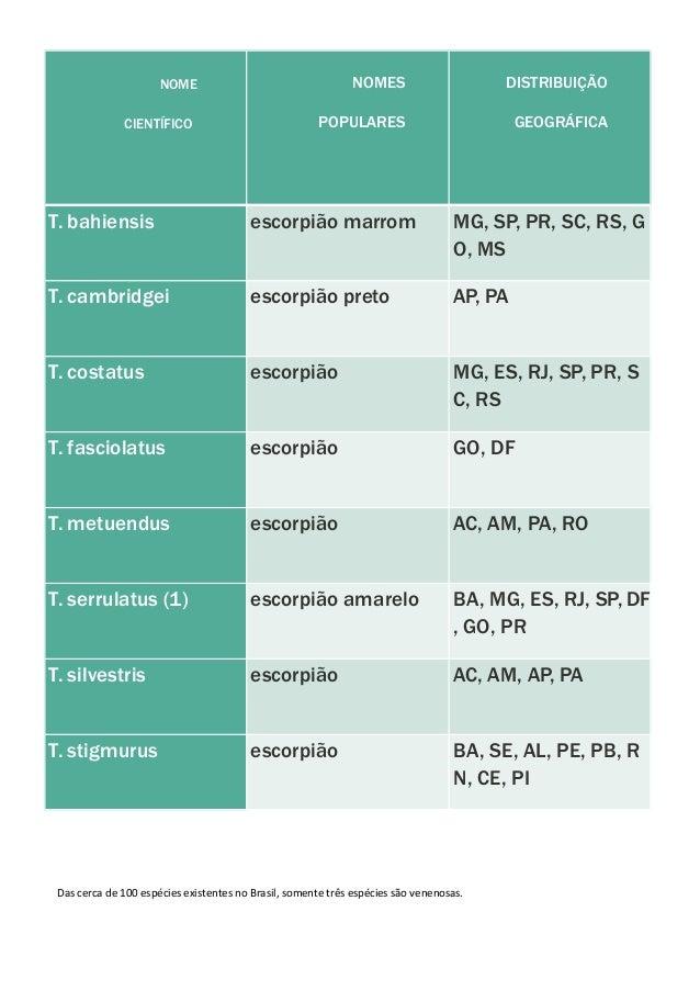 NOME CIENTÍFICO NOMES POPULARES DISTRIBUIÇÃO GEOGRÁFICA T. bahiensis escorpião marrom MG, SP, PR, SC, RS, G O, MS T. cambr...