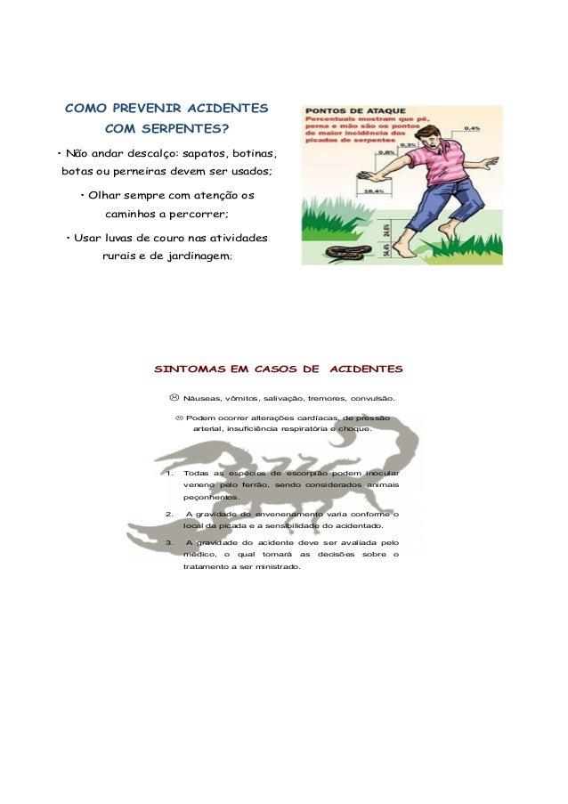 Medidas Preventivas Aranhas e Escorpiões Manter limpos quintais, jardins e terrenos baldios;  Ao manusear materiais de co...