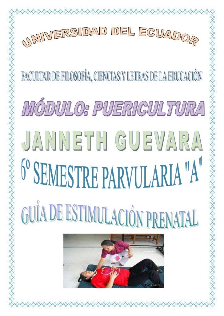 Guia de  estimulación prenatal