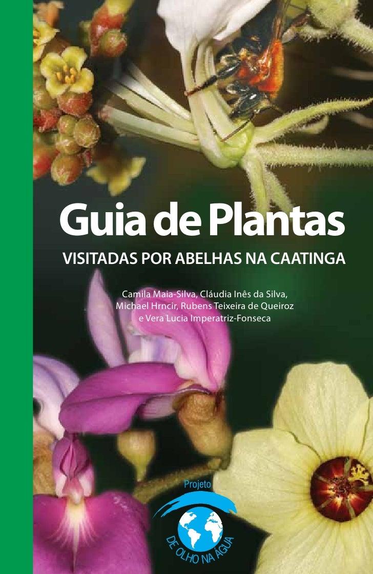 Guia de PlantasVISITADAS POR ABELHAS NA CAATINGA       Camila Maia-Silva, Cláudia Inês da Silva,      Michael Hrncir, Rube...