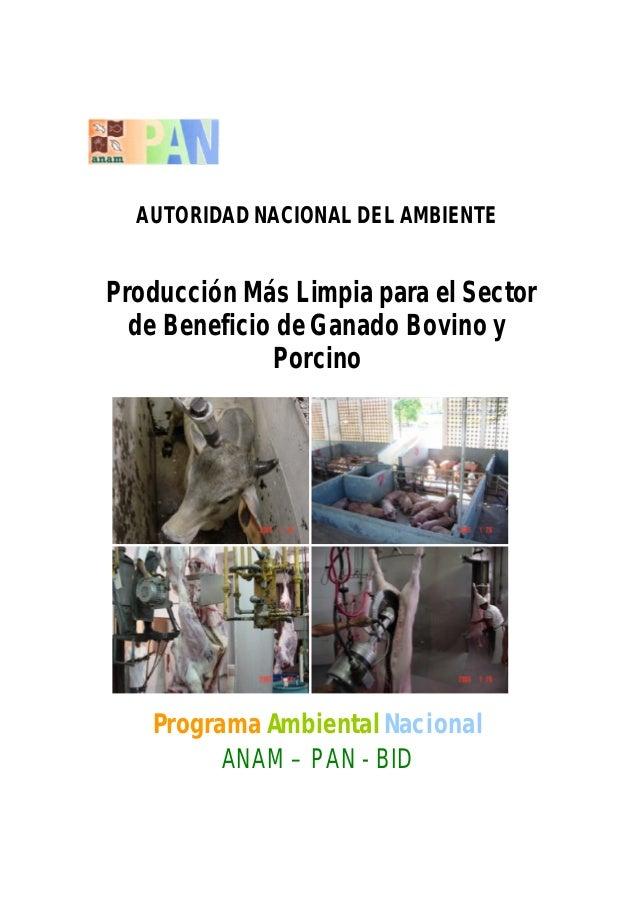 AUTORIDAD NACIONAL DEL AMBIENTEProducción Más Limpia para el Sectorde Beneficio de Ganado Bovino yPorcinoPrograma Ambienta...