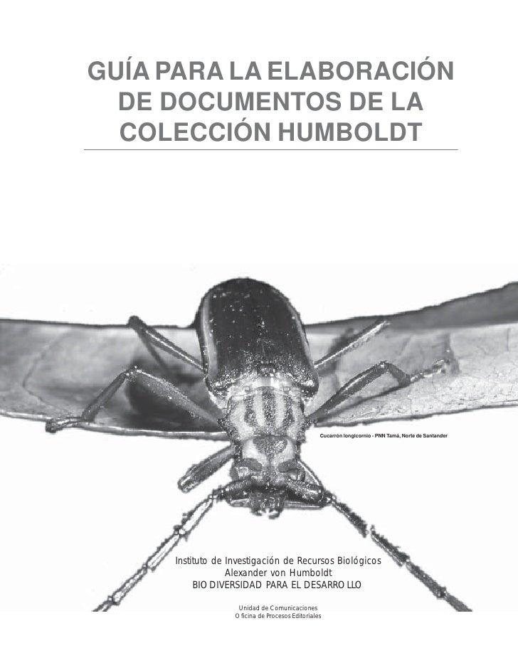 GUÍA PARA LA ELABORACIÓN  DE DOCUMENTOS DE LA  COLECCIÓN HUMBOLDT                                                 Cucarrón...