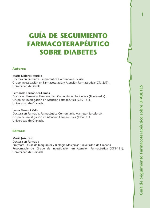 Guia diabetes mellitus tipo 2