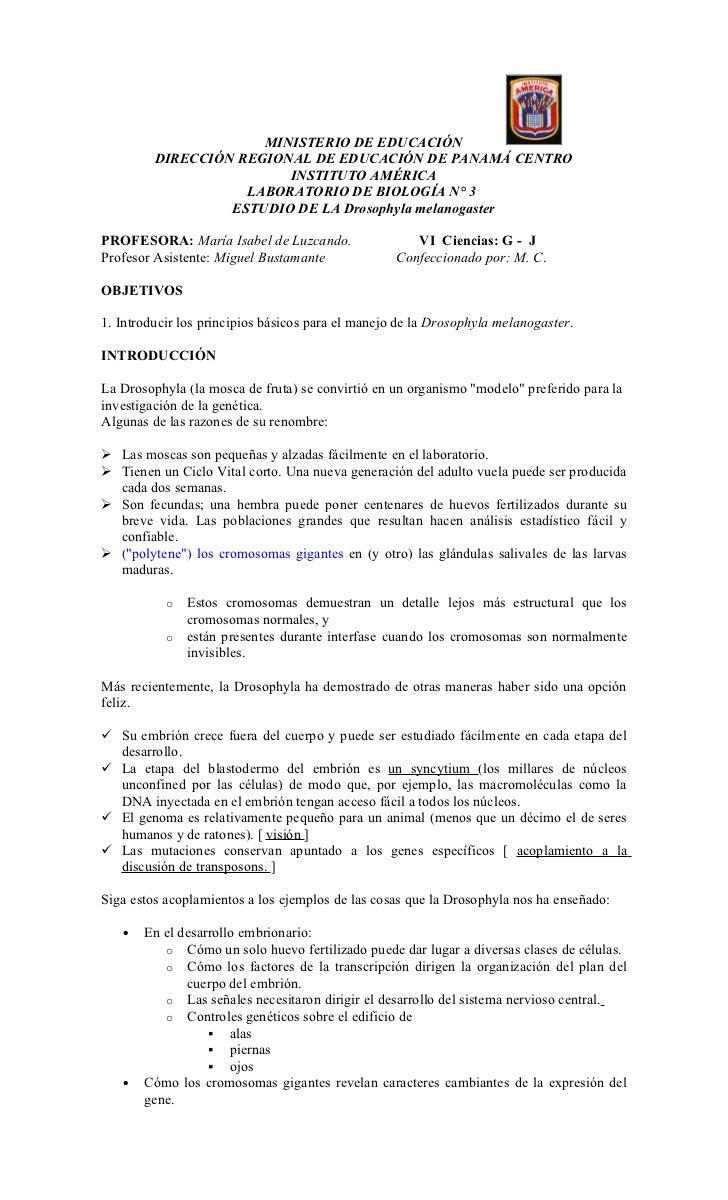MINISTERIO DE EDUCACIÓN         DIRECCIÓN REGIONAL DE EDUCACIÓN DE PANAMÁ CENTRO                         INSTITUTO AMÉRICA...