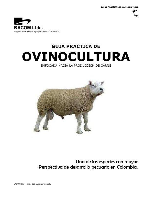 Guía práctica de ovinoculturaBACOM Ltda.Empresa del sector agropecuario y ambiental                                       ...