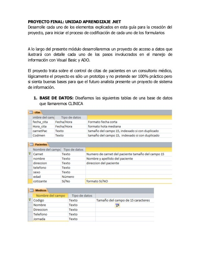 Guia proyecto software clinica