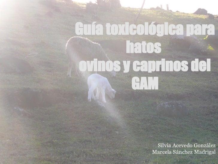 Guía toxicológica para                           hatos                   ovinos y caprinos del                            ...