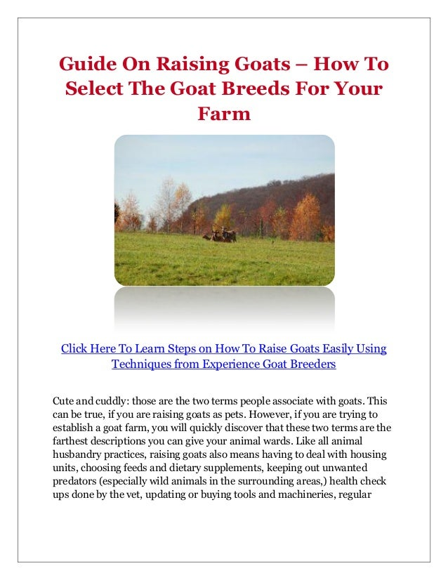Guide On Raising Goats – How To Select The Goat Breeds For Your              Farm Click Here To Learn Steps on How To Rais...