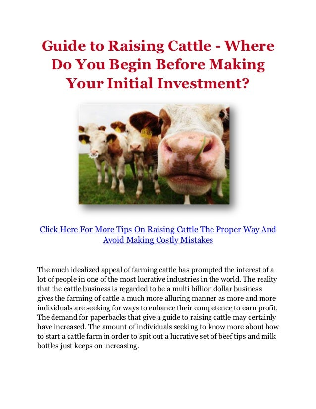 Guide to Raising Cattle - Where Do You Begin Before Making Your Initial Investment