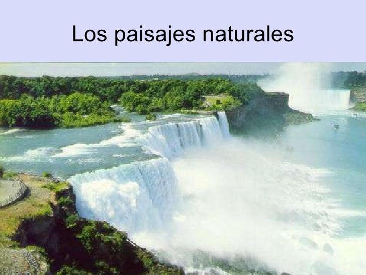 Los paisajes naturales.Guillermo y Antonio