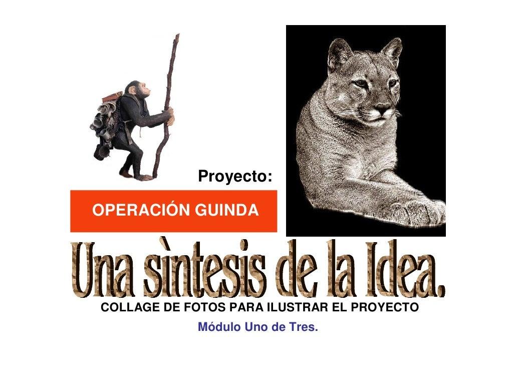 Proyecto:  OPERACIÓN GUINDA     COLLAGE DE FOTOS PARA ILUSTRAR EL PROYECTO             Módulo Uno de Tres.