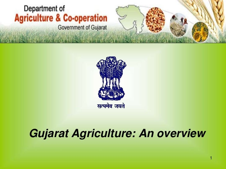 1<br />Gujarat Agriculture: An overview<br />