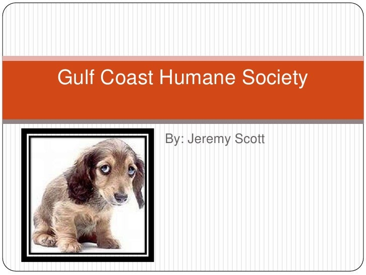 By: Jeremy Scott<br />Gulf Coast Humane Society<br />