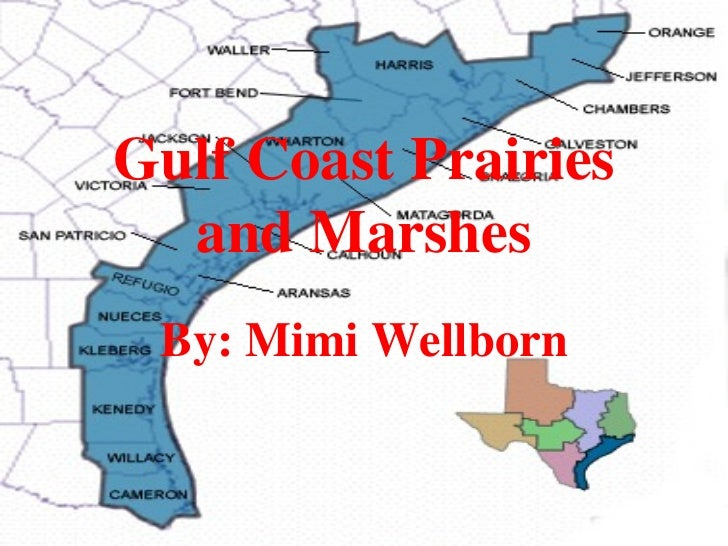 Gulf Coast Prairies  and Marshes By: Mimi Wellborn
