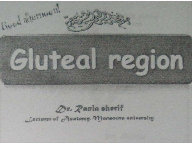 Gulteal region