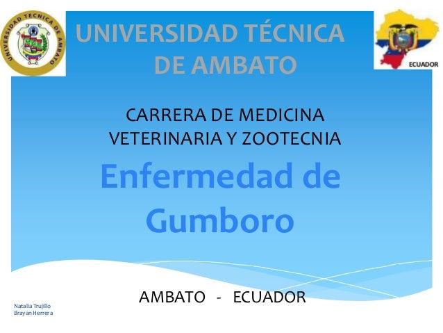 UNIVERSIDAD TÉCNICA DE AMBATO CARRERA DE MEDICINA VETERINARIA Y ZOOTECNIA  Enfermedad de Gumboro Natalia Trujillo Brayan H...