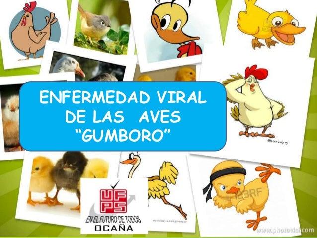 """ENFERMEDAD VIRAL DE LAS AVES """"GUMBORO"""""""