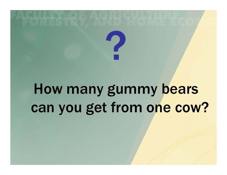 How many gummy bearscan you get from one cow?