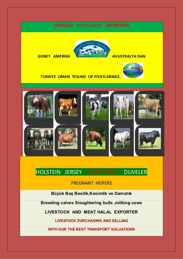Livestock Exporting and Shipping