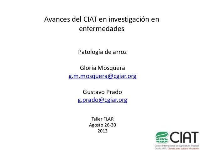 Avances del CIAT en investigación en enfermedades Patología de arroz Gloria Mosquera g.m.mosquera@cgiar.org Gustavo Prado ...