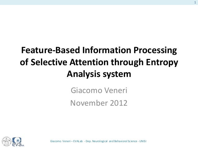 Giacomo Veneri 2012 phd dissertation