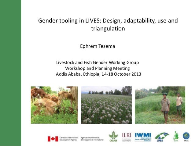 Gender tooling in LIVES: Design, adaptability, use and triangulation