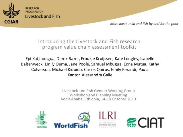 Introducing the Livestock and Fish research program value chain assessment toolkit