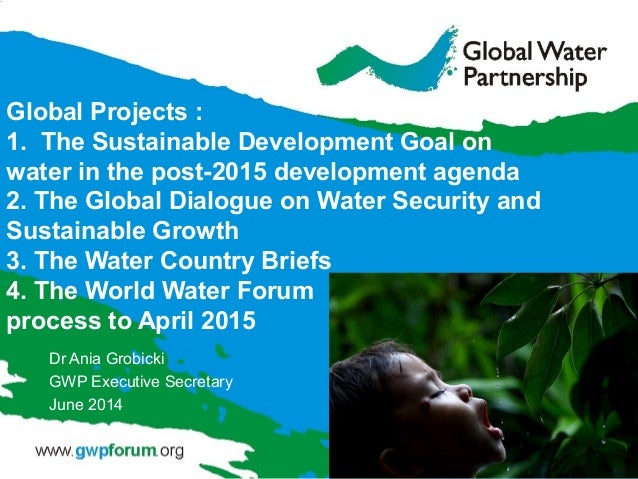 Global Projects : 1. The Sustainable Development Goal on water in the post-2015 development agenda 2. The Global Dialogue ...