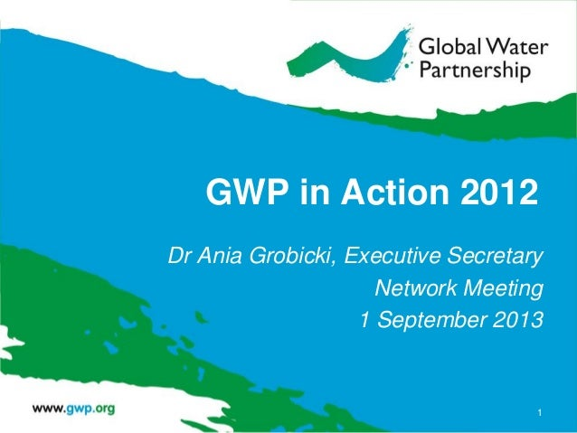 GWP in Action 2012 Dr Ania Grobicki, Executive Secretary Network Meeting 1 September 2013 1