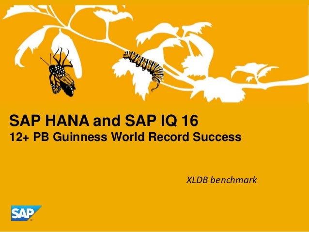 SAP HANA and SAP IQ 16 12+ PB Guinness World Record Success  XLDB benchmark
