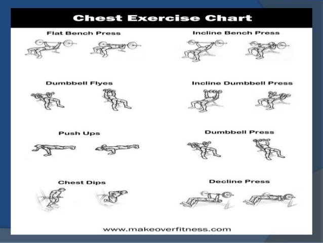 Back > Galleries For > Men Tricep Workout Chart
