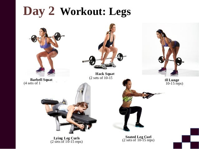 Gym Program For Beginners To Get Muscle
