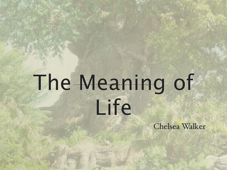 The Meaning of     Life          Chelsea Walker