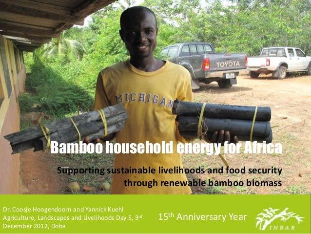 Bamboo household energy for Africa