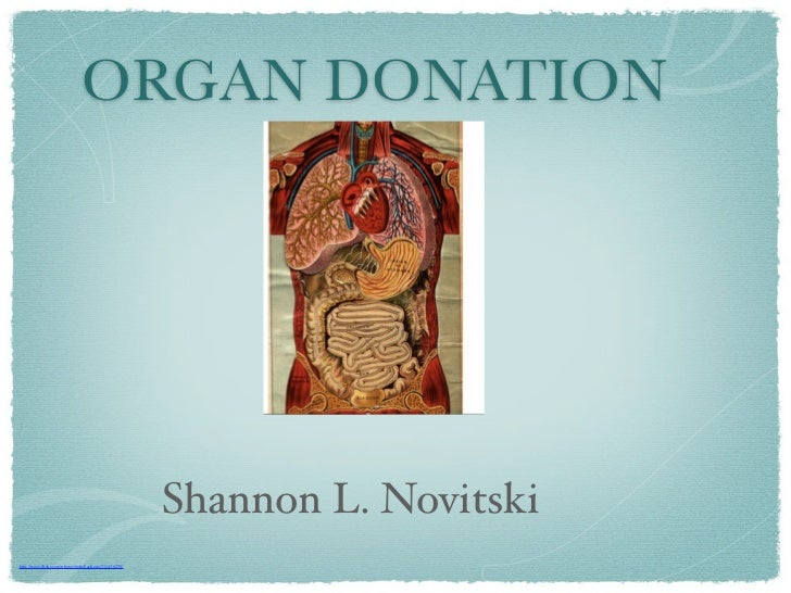 research paper on organ donation