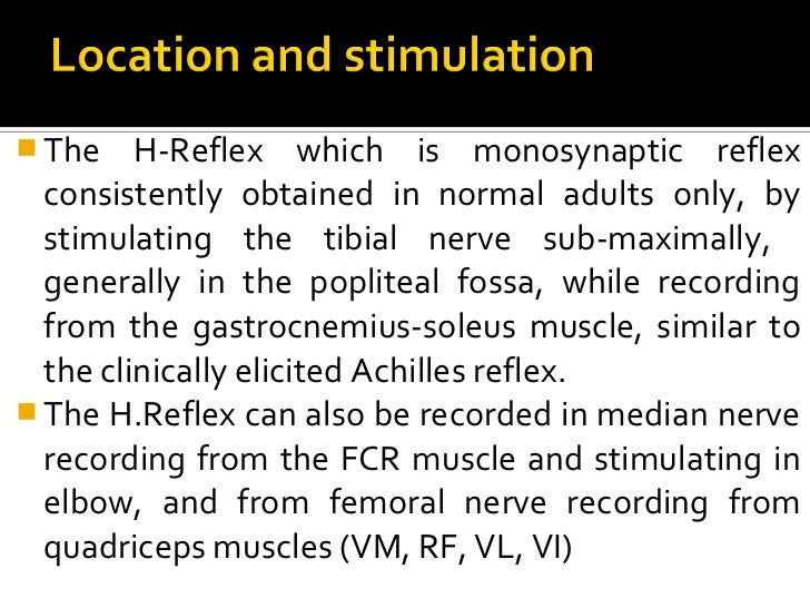 Similarities and Differences of the Soleus and ...