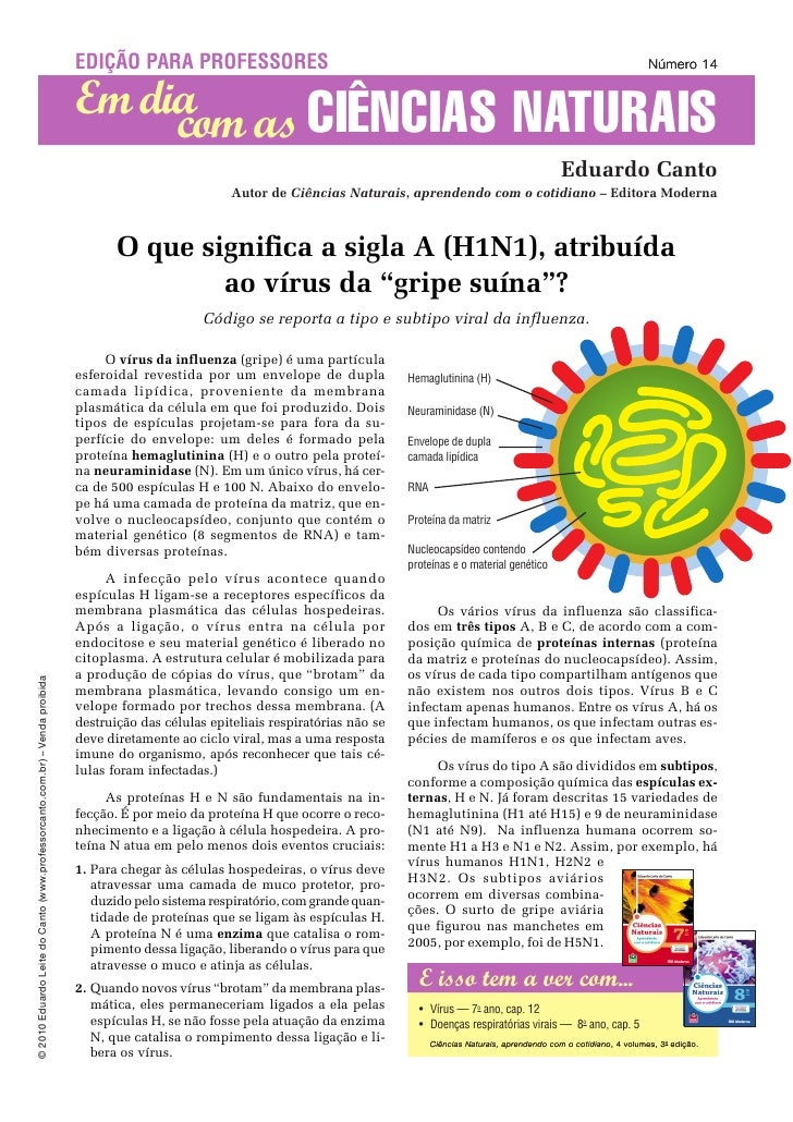 O que significa H1N1