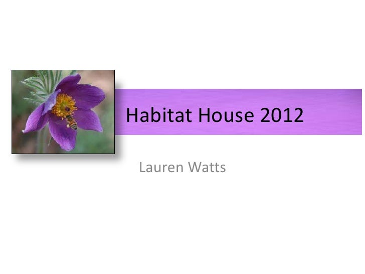 Habitat House 2012 Lauren Watts