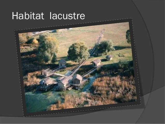 Habitat lacustre