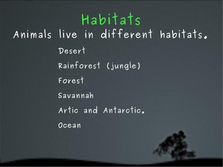 Different Habitats For Animals